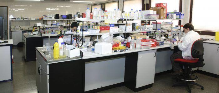 Laboratorio IISG