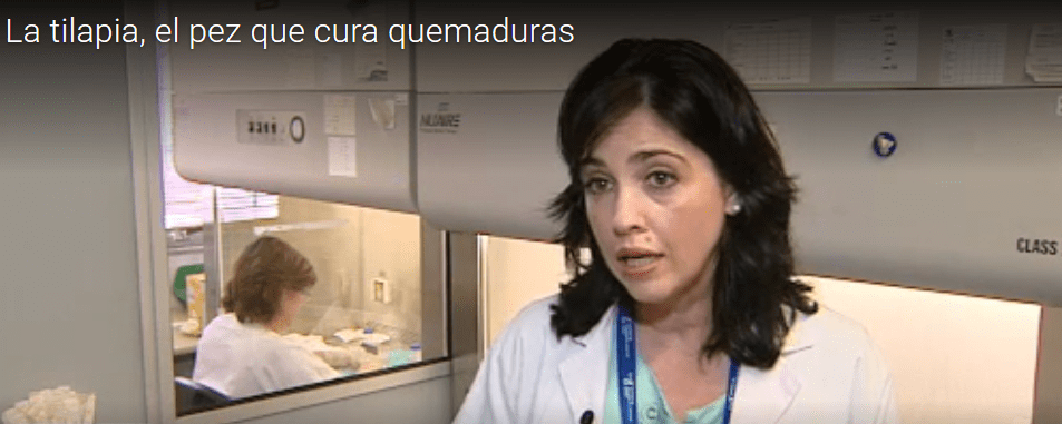 Imagen de la Doctora Isabel Sánchez Muñoz